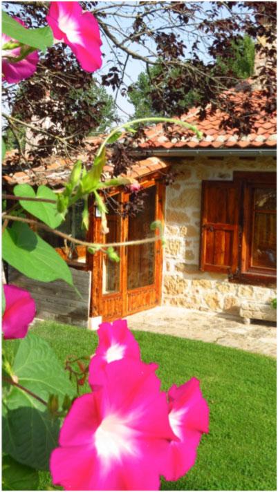 imagen1-home-casa-rural-el-covanchon